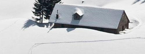 лыжи для охоты как выбрать